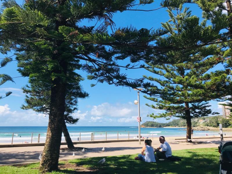 オーストラリアの温暖な気候